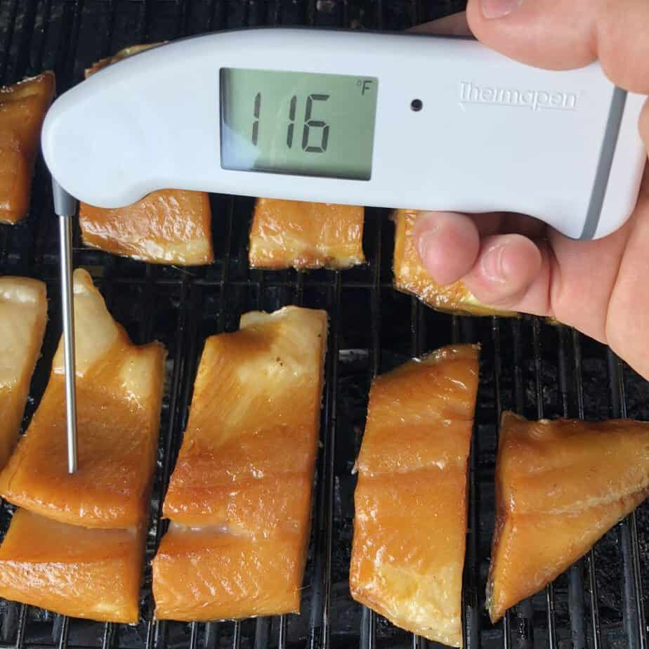 Thermapen MK4 in Smoked Salmon