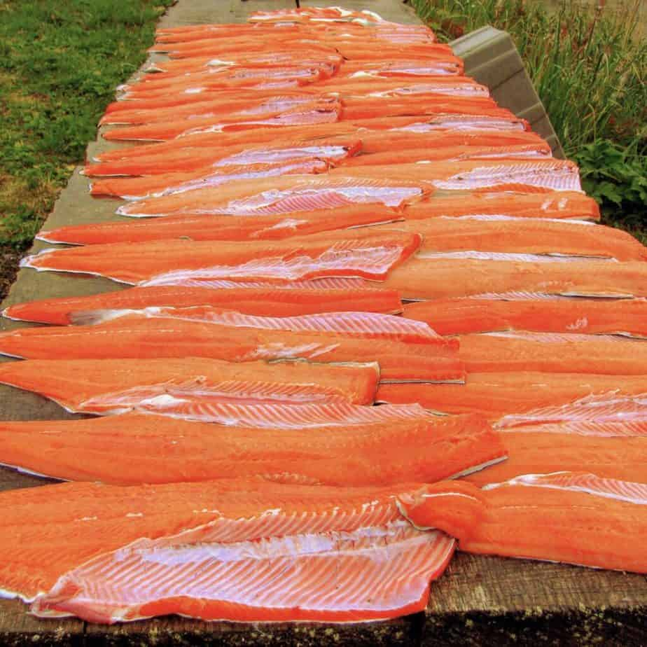 table with salmon fillets lined up - filleted with a sharp knife